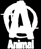 Universal Animal